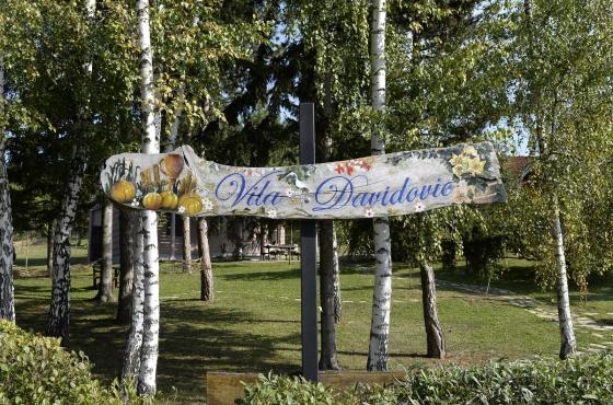 Vila Davidović