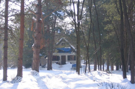 Šumska kuća Bubamara